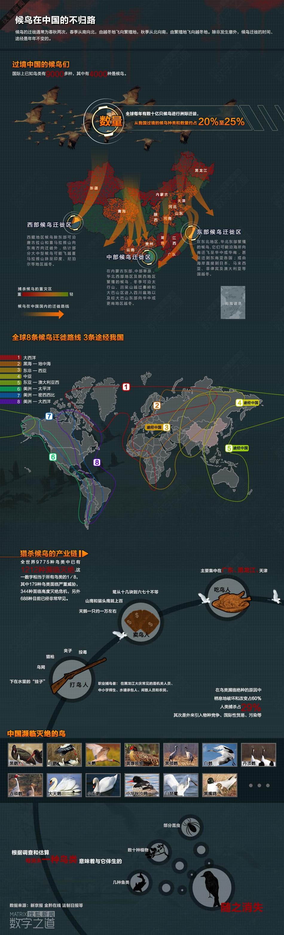 数字之道093期:候鸟迁徙的中国死亡地图-搜狐新闻